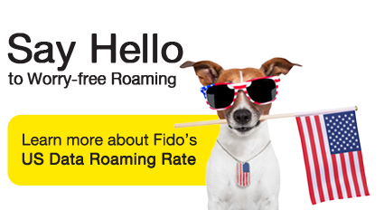 how to set fido voicemail